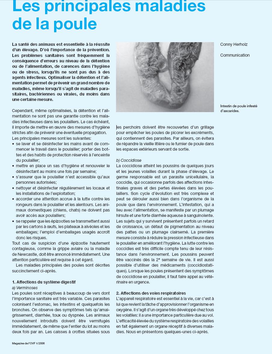 Les maladies et parasites for Les maladies des volailles