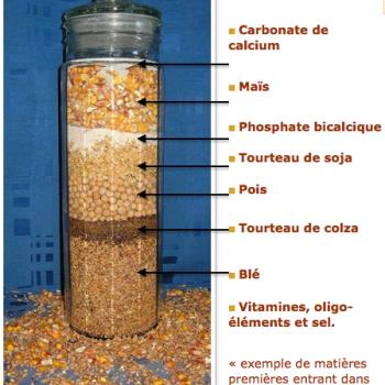 Composition d'aliment pour poulets
