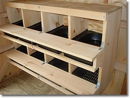 pondoir automatique doté de nids plastiques inclinés facilitant le rangement des oeufs dans des tiroirs